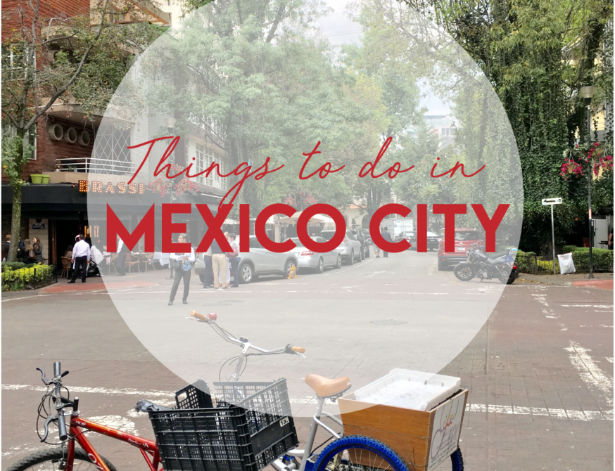 travel guide: things to do in mexico city