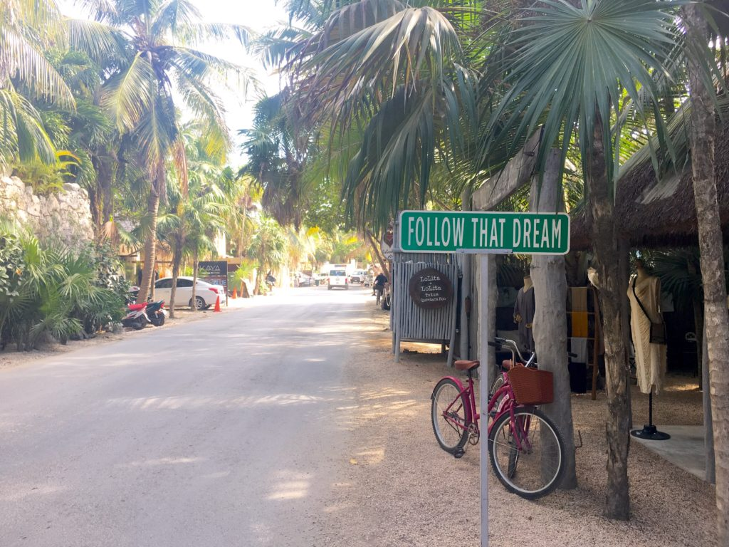 Tulum's jungle road