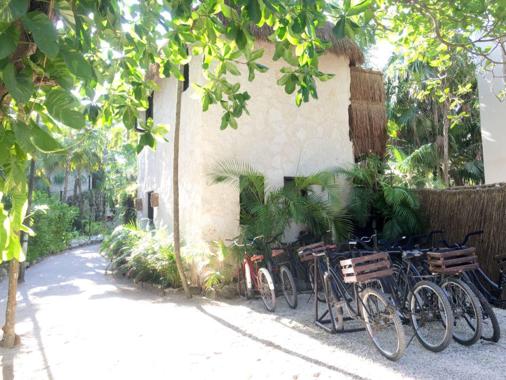 Nest Tulum hotel bikes